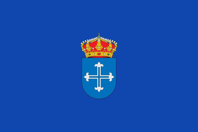 magFlags Bandera Large Municipio de Ajofrín Castilla-La Mancha | Bandera Paisaje | 1.35m² | 90x150cm