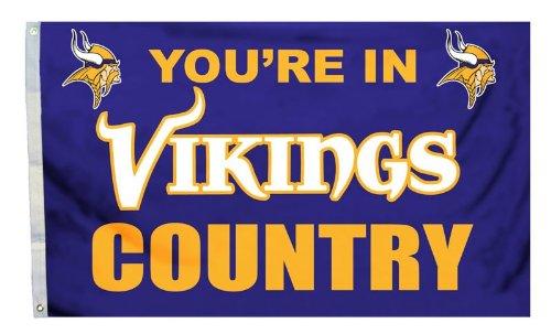 Minnesota Vikings 3 x 5インチ国デザインフラグ   B005XVXUNK, アイ ショップ ホクト f2b028cc