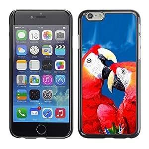 Boast Diy BLOKK case cover / Apple Iphone 6 / love parrot red blue beautiful bird nature / Slim Black Plastic case cover case cover Armor FjJyOB0GNUA