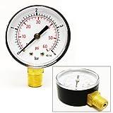 Pool Spa Jacuzzi Filter 0-60 PSI Pressure Gauge Side Mount 1 4