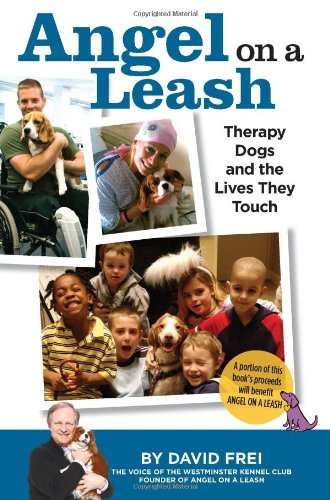 Angel Leash Therapy Lives Touch product image