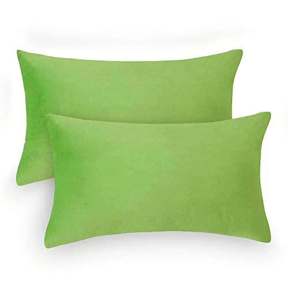 Loom & Mill 2-Pack Throw Pillow Covers, Luxury Velvet Pillow Cases Comfortable Soft Pillow Shams Couch Cushion Cover with Zipper Hidden - (12 x 20 Inch, Green)
