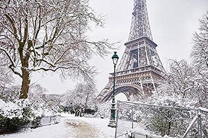 Paris France Eiffel Tower Home Decor Canvas Print choose your size.