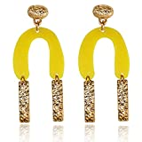 BEMI New Design Gold Plated Alloy U-style Resign Dangle Earring for Woman Fashion Jewelry fit Party