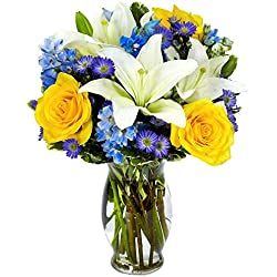 From You Flowers - Bright Blue Skies Flower Bouquet for Valentine's Day (Free Vase Included)