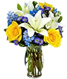 Best Flowers - From You Flowers - Bright Blue Skies Flower Review