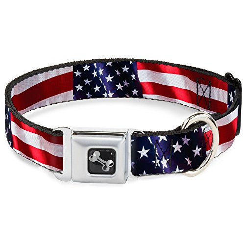 Buckle-Down Seatbelt Buckle Dog Collar - American Flag Vivid CLOSE-UP - 1