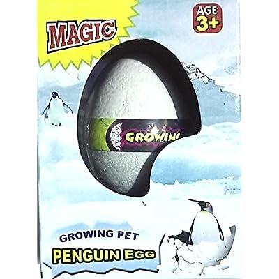 Magic Growing Pet Penguin Egg: Toys & Games