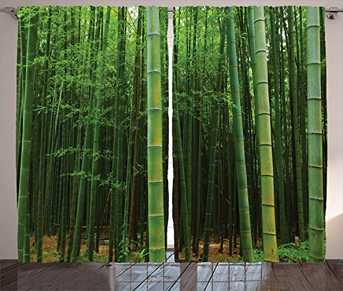 - T&H Home Bamboo Curtains Picture of a Bamboo Forest Exotic Fresh Jungle Vision with Tall Shoots Tropic Art Print Look Semi Window Drapes for Bedroom 2 Panel Set Curtains 104