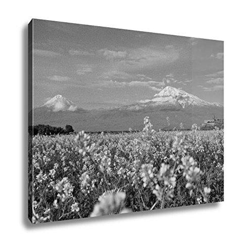 Apostolic Studio - Ashley Canvas Chapel Hill Large and Small Ararat in Armenia, Wall Art Home Decor, Ready to Hang, Black/White, 16x20, AG6006937