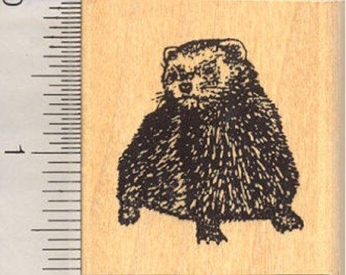 Ferret Rubber Stamp