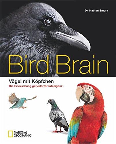 Bildband Vögel: Überflieger. Vögel mit Köpfchen. National Geographic präsentiert wunderschön illustriert die faszinierende Erforschung der gefiederten Intelligenz.
