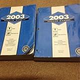 2003 PONTIAC AZTEK BUICK RENDEZVOUS Service Shop Repair Workshop Manual Set