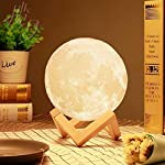 3D Space Light-3D Printing Stepless Dimmable Lamp Shade-Warm and White Touch Control Brightness with USB Charging Decor…