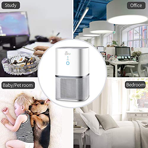 Jese Air Purifier for Allergies and Pets with 4-in-1 HEPA Filter, Small Air Purifier Dust Allergens Smoke Odor Eliminator, Air Cleaner for Home, Air Filter for Bedroom, Kitchen, Office