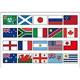 国旗 フェイス シール  <医療用シールタイプ>  (20チームセット Ver. RUGBY-2019)