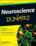 Neuroscience for Dummies, Frank Amthor, 1118086864