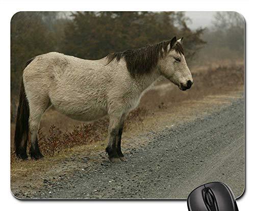 Mouse Pad - Wild Pony Misty Road Pony Chincoteague - Misty Pony