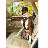 Kurgo TruFit Smart Dog Harness, Brown, Medium, My Pet Supplies