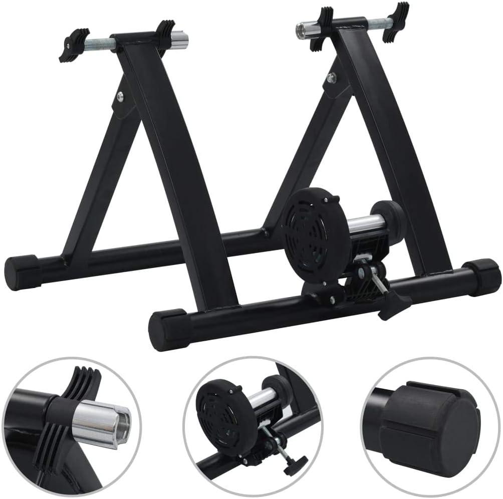 vidaXL Rodillo de Entrenamiento de Acero Fitness Musculación ...