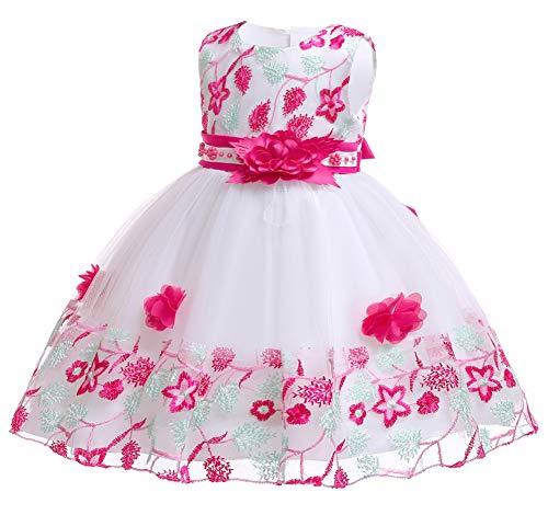 (NSSMWTTC Flower Girls Dresses Child Easter Pageant Party Baby Toddler Easter A Line Dress 9M 12 Months (Rose,12M))