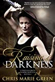 Raising the Darkness (A Dawn Madison Novella)