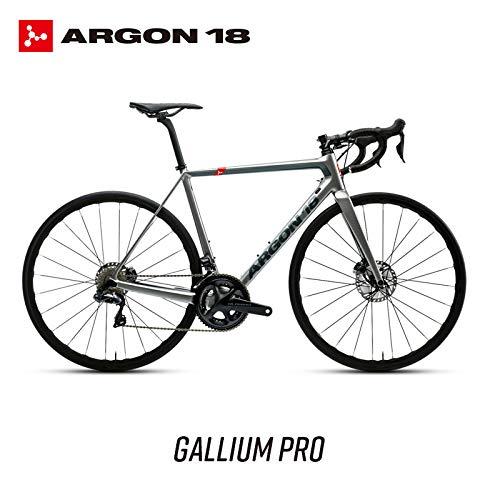 ARGON18 Gallium DISC Titanium Silver disc Road Bike