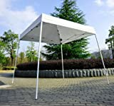 Polar Aurora 10' X 10' 5 Color Slant Leg Easy Pop up Popup Canopy Party Sun Shade Tent (White)