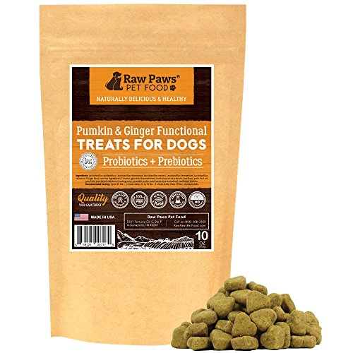 Cheapest Raw Paws Prebiotics Probiotic Dogs soft Chew, 10-oz/100-ct - USA Made Dog Yeast Infection Treatment, Relieves Dog Diarrhea, Puppy Probotics tiny Dogs & large Dogs, Dog Probiotics Chewable Check this out.