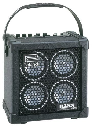 Roland Micro Cube Bass RX Battery-Powered Bass Combo (Street Battery Powered Stereo Amplifier)
