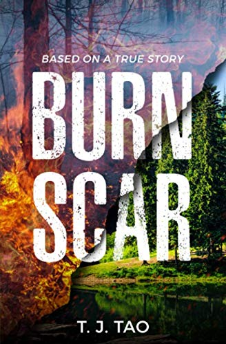 Burned Scar Woman Art Fantasy