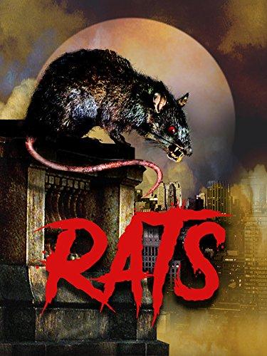 Rats (Park Rat)