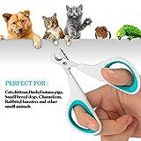 BAODATUI Pet Nail Clippers - Dog & Cat Animal