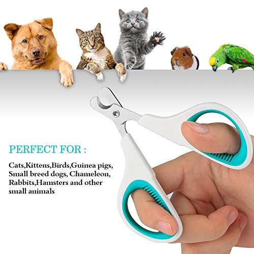 KAISHUITANGJIBA Pet Nail Clippers Small Animals, Easy to Use Nail Trimmer Toenail Clippers - Sharp Cuts Safety Guard so You can Clip Confidence - Blue White by KAISHUITANGJIBA (Image #4)