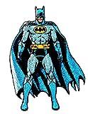 DC Comics Superhero The Dark Knight Batman Detective Crime Fighter Vigilante Iron On Patch