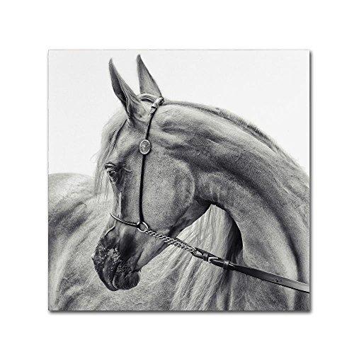 Trademark Fine Art The Arabian Horse by Piet Flour, 18x18-Inch Canvas Wall Art by Trademark Fine Art