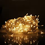 Eshing Decorative Christmas Lights 33ft 100 LED Fairy String Light for Garden, Lawn, Patio, Xmas Tree, Wedding, Party, Outside, Holiday, Indoor, Outdoor Decorations (Warm White)