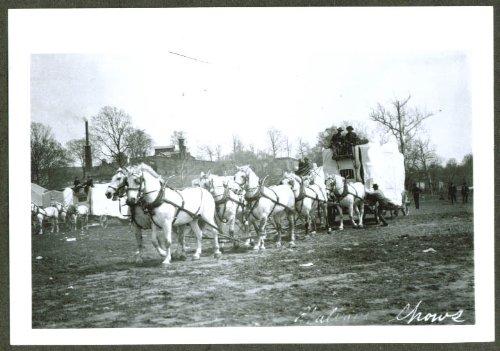 8-horse animal wagon Hagenbeck-Wallace Circus 1905-6