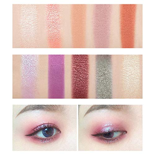 Matte and Shimmer Eyeshadow Palette,Colour Makeup Dish 10
