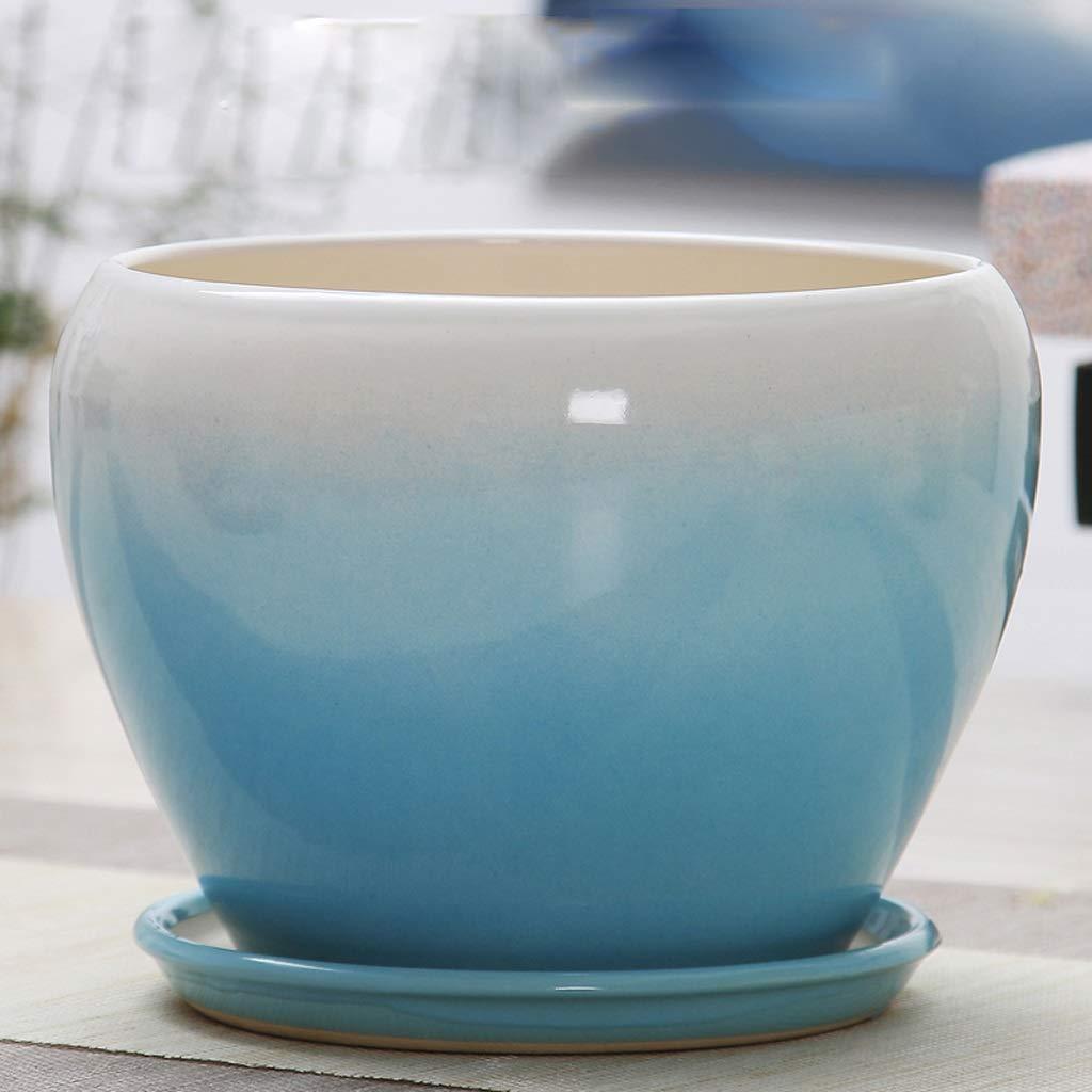 CKH Vaso da Fiori in Ceramica Blu con Vassoio Semplice e Facile da Abbinare a Vaso da Fiori (Dimensione   S)