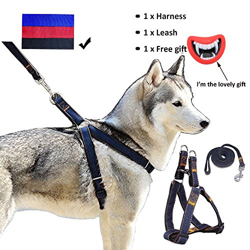 Whippy Durable Dog Leash Harness For Dogs Heavy Duty And