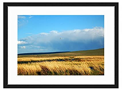 JKYUKO 16 Inch Black Wall Picture Frame Beautiful Scenery- Made to Display Pictures 8x12 with Mat or 12x16 Without Mat FJ-041