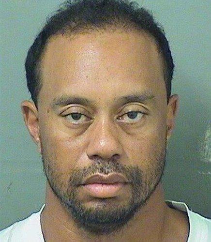 TIGER WOODS MUGSHOT GLOSSY POSTER PICTURE PHOTO golf golfer dui jail arrest by ConversationPrints (Image #1)