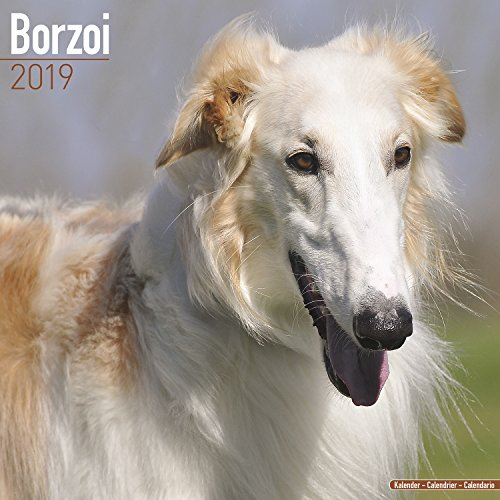 (Borzoi Calendar - Dog Breed Calendars - 2018 - 2019 Wall Calendars - 16 Month by)