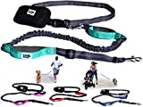 Black Rhino Premium HANDS FREE DOG LEASH for Running Walking Jogging & Hiking - Adjustable Length Dual Handle Bungee Leash Medium – Large Dogs Neoprene Padded Handles - Running Pouch Included Aqua