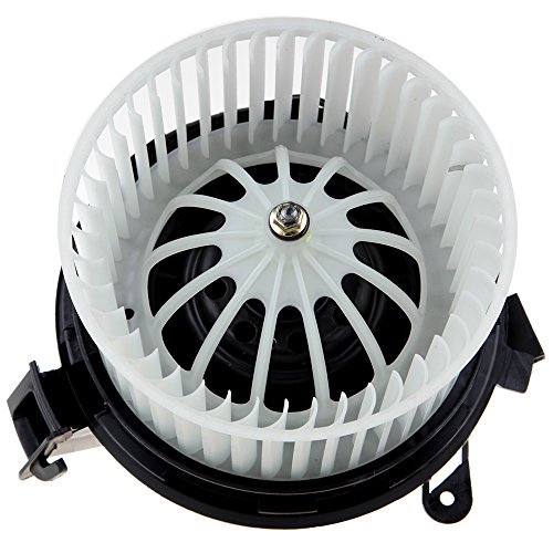 ROADFAR Heater Blower Motor 212 820 07 08 Air Conditioning Blower Motor with Fan Cage Fit for Mercedes-Benz C180/ C200/ C250/ C300/ C400/ E200/ E300/ E400/ E500/ E63 AMG/ GLK250/ GLK300/ GLK350 ()