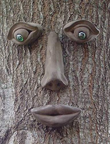 Simon Tree Face -