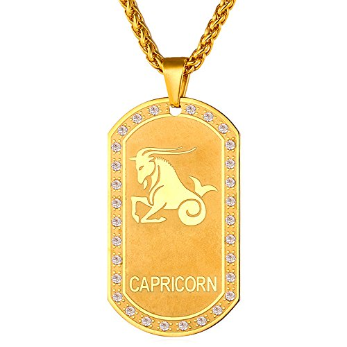 (U7 Zodiac Jewelry Cubic Zirconia 18K Gold Plated Dog Tag Pendant Necklace (Capricorn))
