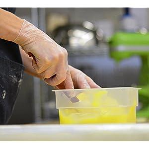 AMMEX GlovePlus Vinyl Disposable Powder Free Gloves - food prep