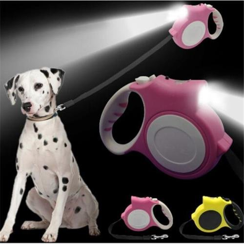 Affirmation Body Shampoo (ANGELS--New LED Automatic Retractable Pet Dog/Cat Puppy Traction Rope Walking Lead Y)